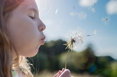 Is There a Connection Between Allergies and Asthma?